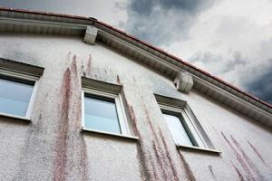 Fassade mit Algenbefall